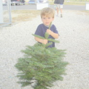 We have a KID'S ONLY corner at EVERY LOCATION — kids can pick out their own tree! Up to 3-feet FREE in lieu of the postcard discount — see our COUPON page for details!!